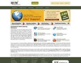 HostingOnWeb - Professional Website Hosting