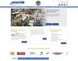 MetaSystems Inc