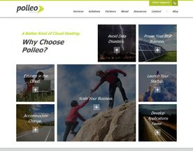 Polleo Systems