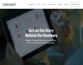 Tidemark Systems