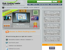 Web Hosting Leader