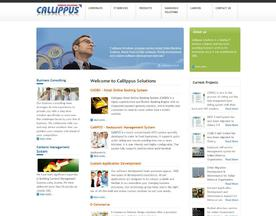 Callippus Solutions