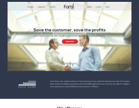 Forte Consultancy Group