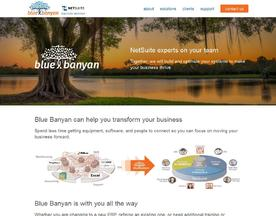 Blue Banyan Solutions