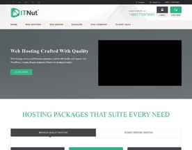 IT Nut Hosting
